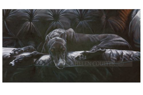 Greyt Couch | Helen Coulter Art