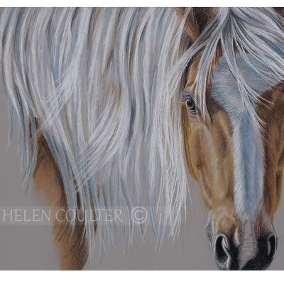 The Pony | Helen Coulter Art