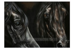 Helen Coulter Art | The Eyes Have It