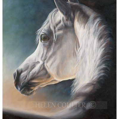 Silver Spirit | Helen Coulter Art