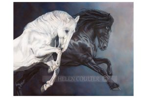 Light And Dark Of Beauty | Helen Coulter Art
