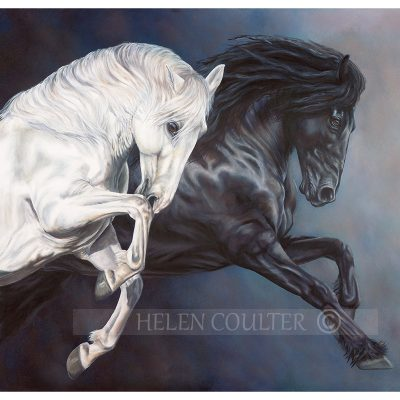Helen Coulter Art | Light And Dark Of Beauty