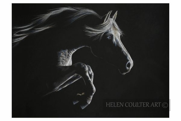 Helen Coulter Art | Silver In The Moonlight