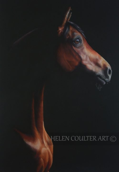 Enlightenment | Helen Coulter Art