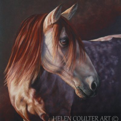 Touched by the Light | Helen Coulter Art