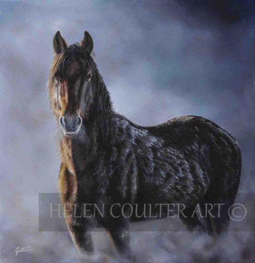 An Alpine Dawn | Helen Coulter Art