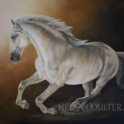 Glow | Helen Coulter Art