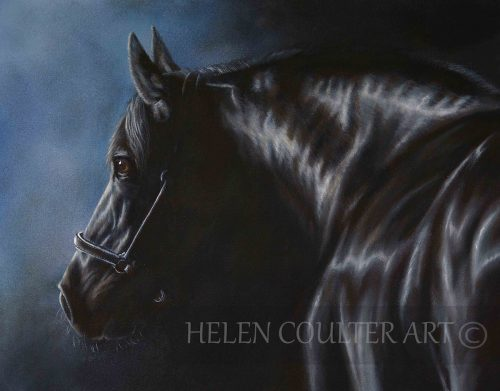 Out Of The Blue | Helen Coulter Art