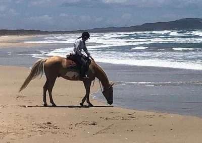 Beach Ride | Helen Coulter