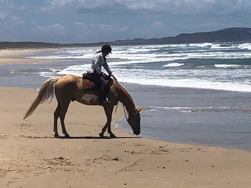 Beach Ride | Helen Coulter
