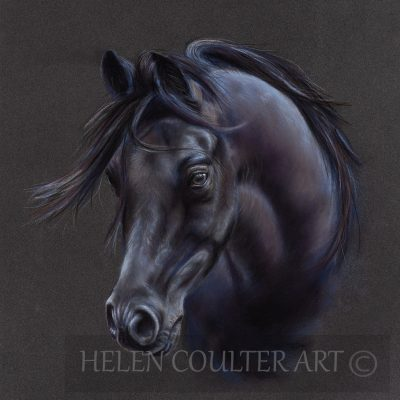 Black Magic | Helen Coulter Art