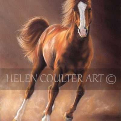 Windrush | Helen Coulter Art