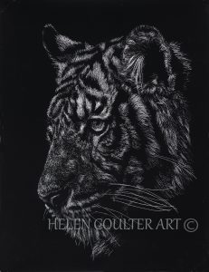Tiger | Helen Coulter Art