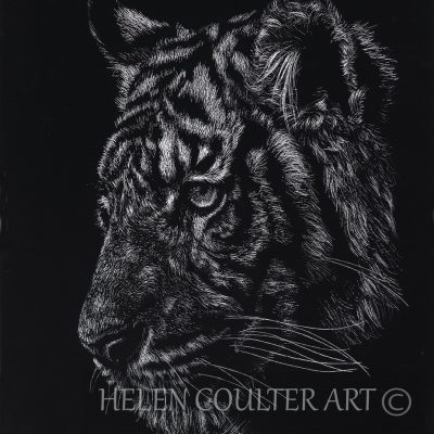 "Tiger ""You're A Tiger"" 