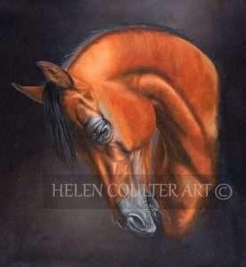 Arabian Lights | Helen Coulter Art