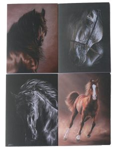 Equine Gift Cards Set 1 x 4 | Helen Coulter Art