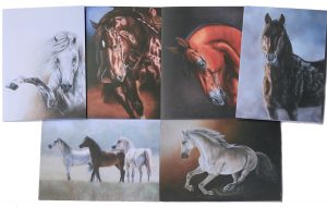 Equine Gift Cards Set 1 x 6 | Helen Coulter Art