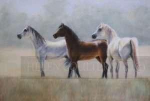 Misty Morning | Helen Coulter Art