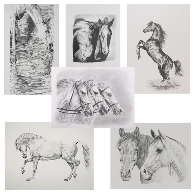 Greeting Cards Set 1 | Helen Coulter Art